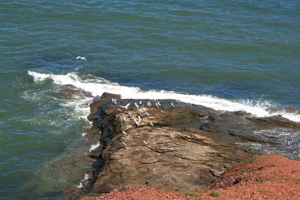 Glace Bay, July 8, 2009