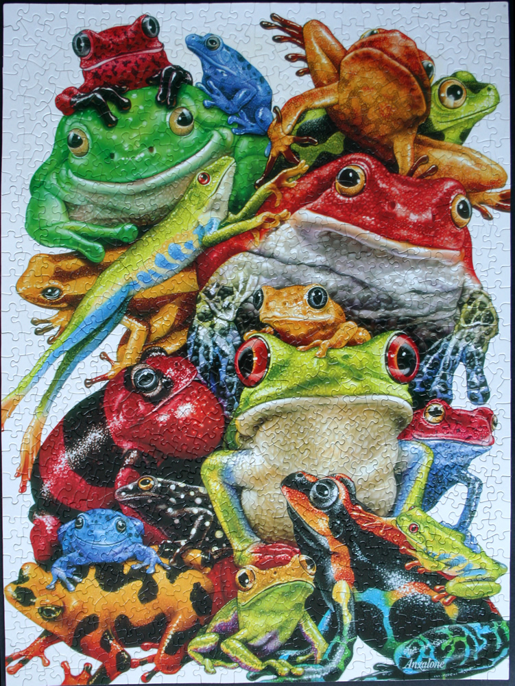 puzzle frog
