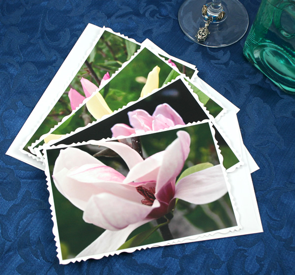 Dreamy magnolia cards, etsy, front white, medium