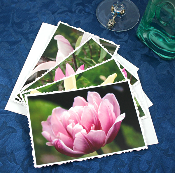 Dreamy magnolia cards, etsy, light pink white, medium