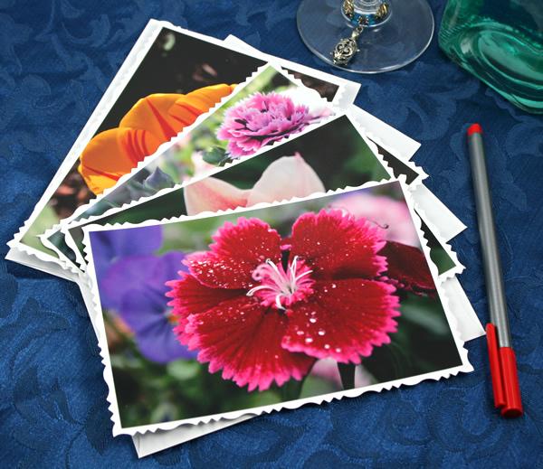 Garden fresh cards, etsy, front carnation, medium