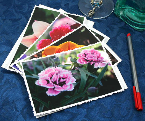 Garden fresh cards, etsy, front carnations, medium