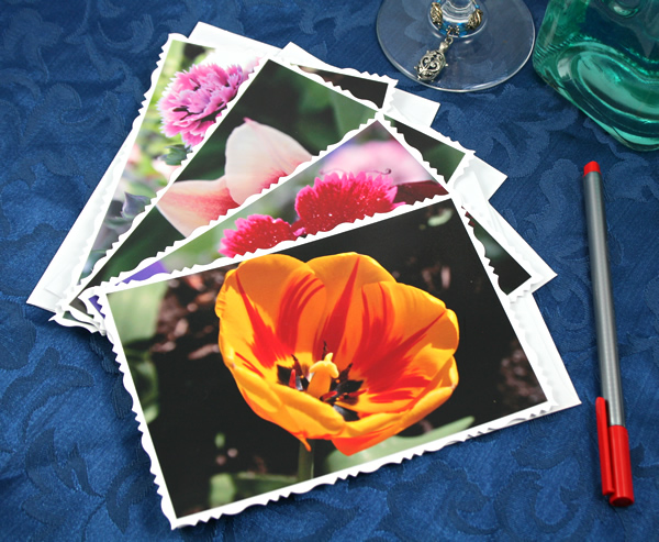 Garden fresh cards, etsy, front orange tulip, medium