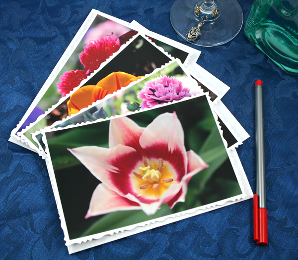 Garden fresh cards, etsy, front tulip, medium
