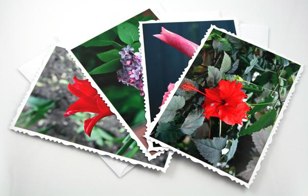 New life cards, etsy, front deck, medium