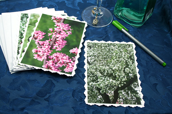 Spring blooms cards, etsy, odd, medium