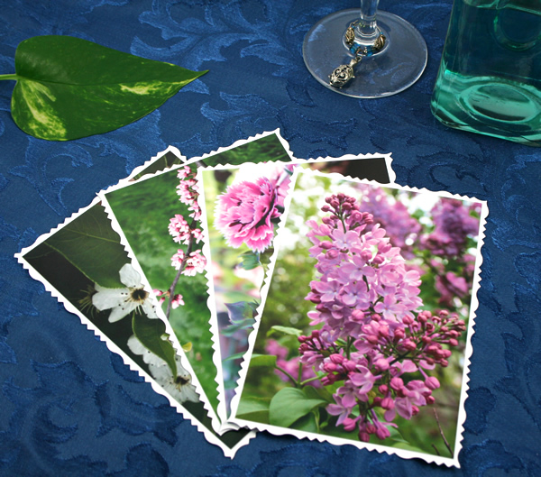 Fly into spring cards, etsy, front lilacs, medium