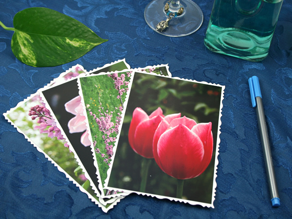 Petals to light cards, etsy, front tulips, medium