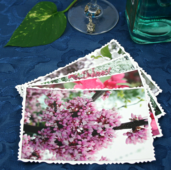 Blossom waves cards, etsy, front lilac, md