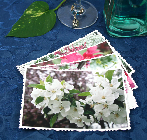 Blossom waves cards, etsy, front white, md
