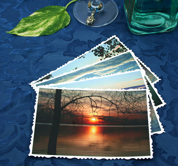 Branches over water cards, etsy, front sun, md