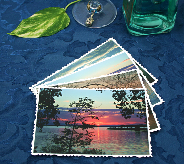 Branches over water cards, etsy, front tree, md