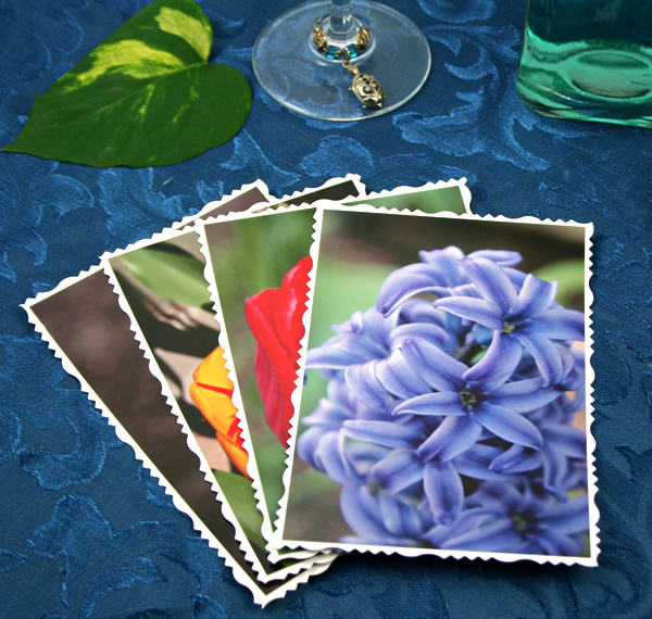 Bright side of life cards, etsy, front hyacinth, md