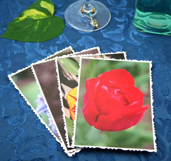 Bright side of life cards, etsy, front red tulip, md