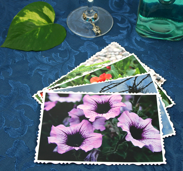 Gramophones and needles cards, etsy, front lilac, md