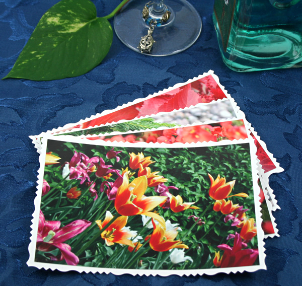 Summer bouquet cards, etsy, front tulips, md