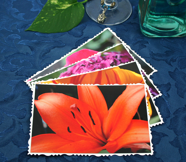 Summer solstice cards, etsy, front, lily, md