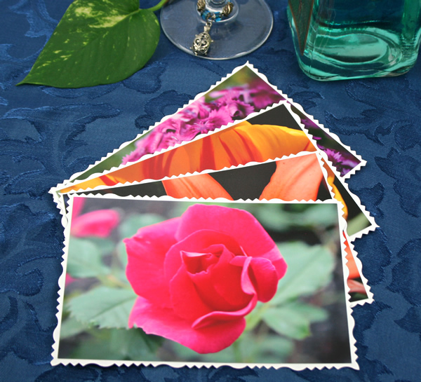 Summer solstice cards, etsy, front, rose, md