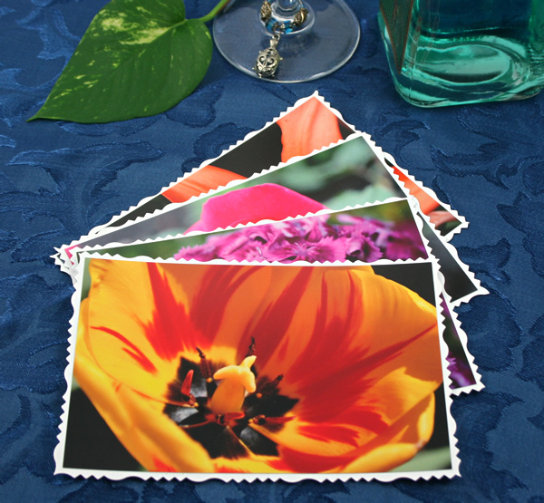 Summer solstice cards, etsy, front, tulip, md