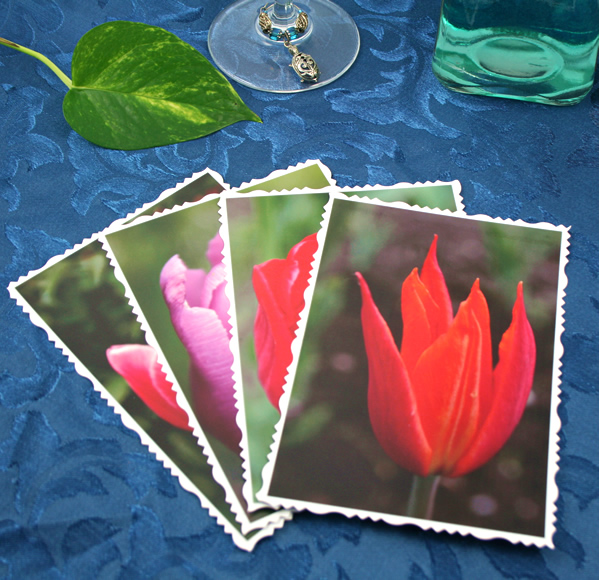 Tulip universe cards, etsy, front flame, md