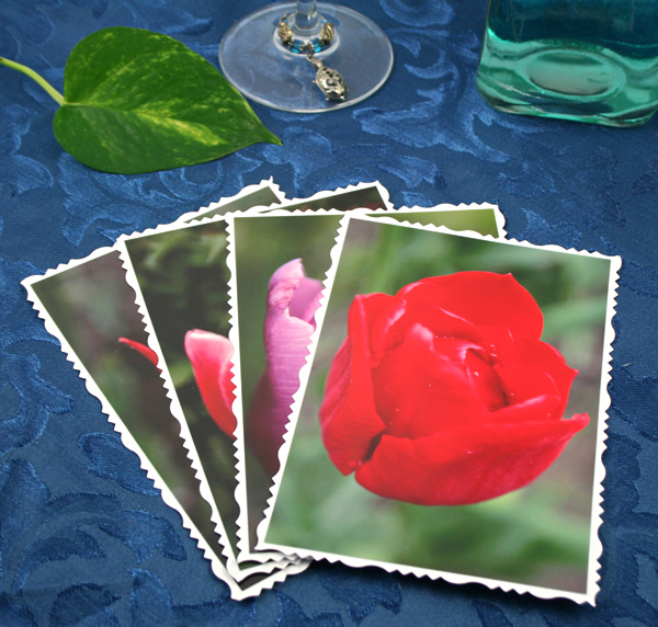Tulip universe cards, etsy, front red, md