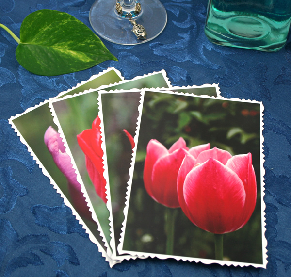 Tulip universe cards, etsy, front two, md