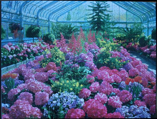 Greenhouse, med