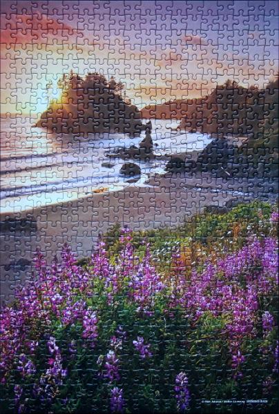 Marc Adamus - Beach Garden, med