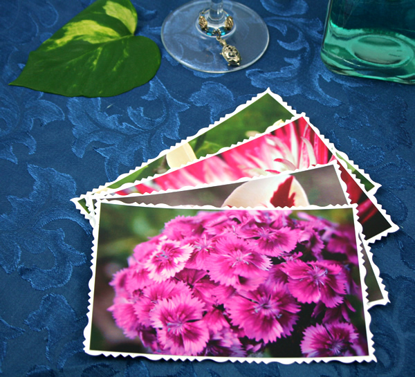 Flower crown cards, etsy, front sweet william, md