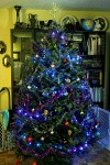 tree, md