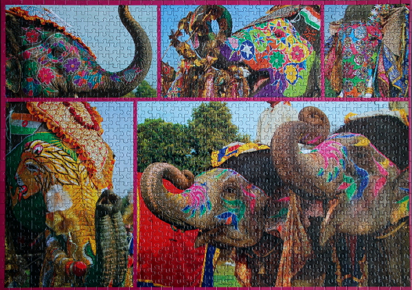 Painted Elephants, med